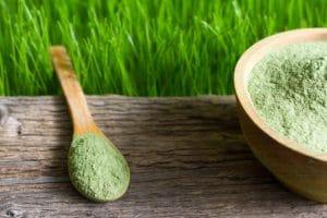 Junge Gerste und Chlorella spirulina auf Holzbrett und grünem Gras